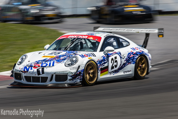 Mark Sandridge & Joe Varde #25, 2015 Porsche GT3 Cup (3800cc)