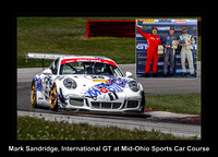 #25 --Mark Sandridge / Joe Varde, 2015 Porsche GT3 Cup (3800cc)